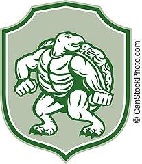 Green Turtle Fighter Mascot Shield Retro