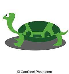 green turtle illustration on white isolated background