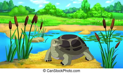 Big Green turtle sits near the pond on a sunny summer day. Handmade 2D animation.