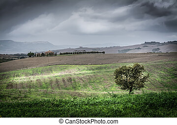 Green valley under a cloudy sky in Tuscany