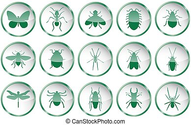 Green vector insects