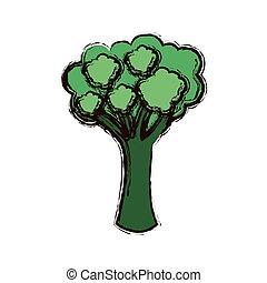 green vegetable broccoli icon