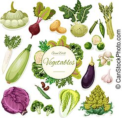 Green vegetables and beans cartoon poster design