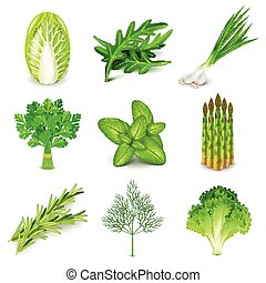 Green vegetables and spices icons vector set - Green...
