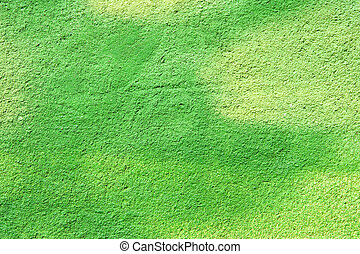 green wall background - green painted wall background