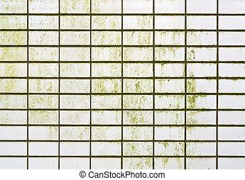 Green wall surface
