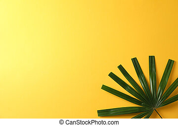 Green washingtonia leaves on yellow background, copy space