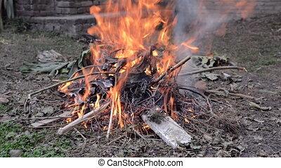 Green waste fire - Static shot of green waste fire in garden