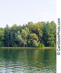 green water in the lake. background.