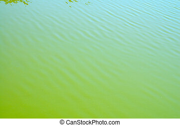 green water surface with small waves
