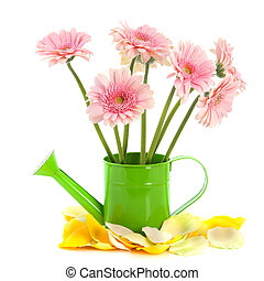 Green watering can with pink flowers