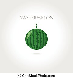 green watermelon illustration