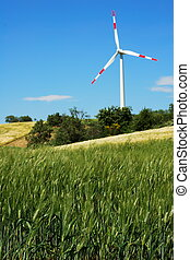 Green wheat field and wind turbine