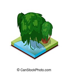 Green willow tree isometric 3D icon