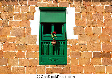 Green Window and Red Flowers