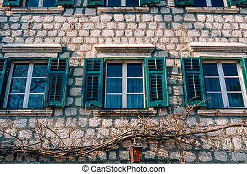 Green window shutters. The facade of houses