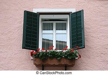 Green window and peach wall