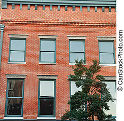 Green Windows in Old Brick Building
