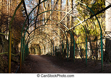 Green wooden arcade in estate park. Arkhangelskoe country seat, Russia.
