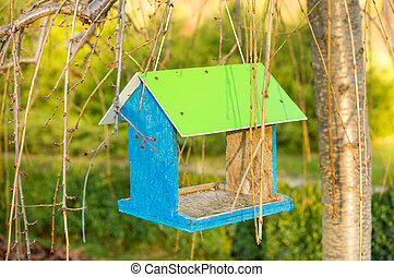 Green wooden bird nest box