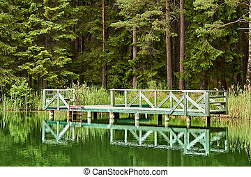 green wooden pier on a forest lake