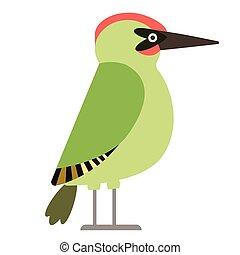 green woodpecker flat illustration