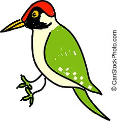 green woodpecker - woodpecker isolated on white drawn in ...