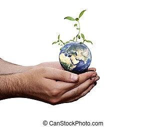Green world
