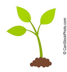 Newborn green plant. Spring symbol. Vector illustration