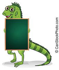 greenboard, indietro, iguana
