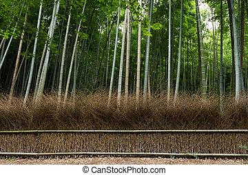 Greenery Bamboo