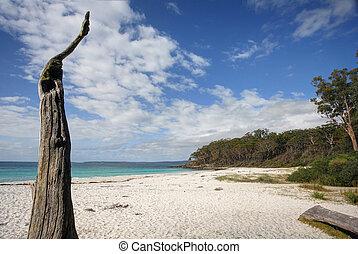greenfields, praia, jervis, baía, austrália