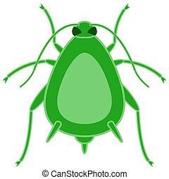 greenfly, 昆虫, アイコン