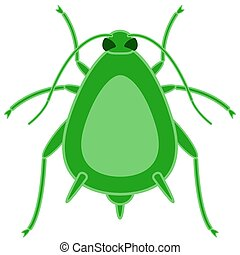 Greenfly insect icon