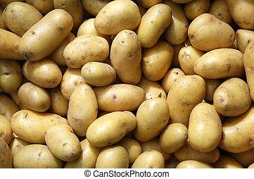 greengrocers., pommes terre, haut, dehors, nouveau, fin
