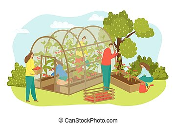 Greenhouse agriculture plant at farm, farmer harvest vector ...
