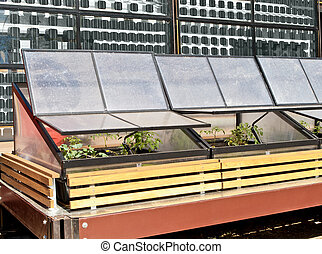 Greenhouse Cold Frame in Front of Solar Panels - Greenhouse...