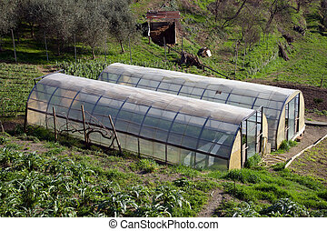 Greenhouse for the cultivation of salad - small greenhouse ...