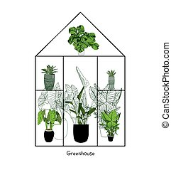 Greenhouse illustration on white background. flower house. Winter Garden. Gardening and truck farming concept. Exotic houseplant..