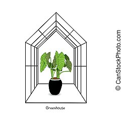 Greenhouse illustration on white background. flower house. ...