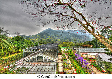 Greenhouse in countryside of Hong Kong, HDR image.