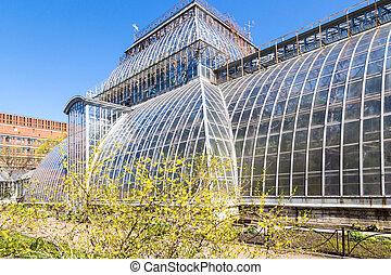 greenhouse in sankt-peterburg botanic garden. old ...
