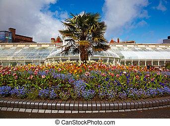 Greenhouse in the Belfast Botanic Gardens, Nothern Ireland