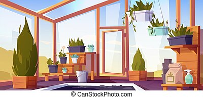 Greenhouse interior with potted plants on shelves. Empty ...