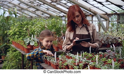 Greenhouse owner and her cute daughter are counting pot...