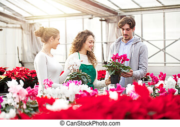 greenhouse workers trimming plants