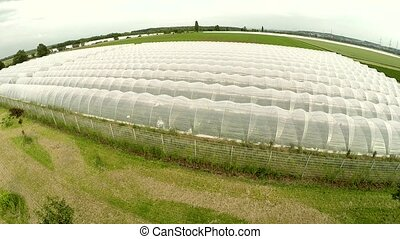 greenhouses Aerial - Aerial video footage of a field with...