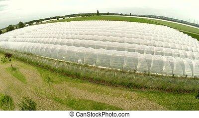 greenhouses Aerial