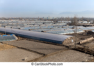 Greenhouses on agricultural field outside the city