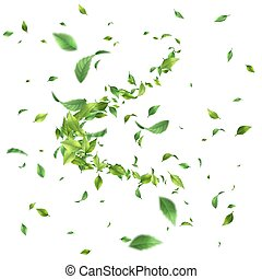 Greens Leaf Whirling in the Wind